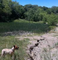 EMS-erosion-control-landfill