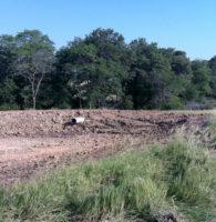 EMS-erosion-control-sediment-pond-landfill